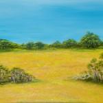 Bush Wildflower Field WA - Oil on Canvas, 76cm x 101cm x 3.8cm